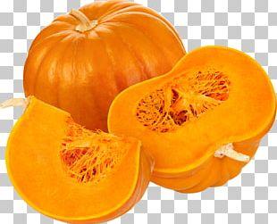 Pumpkin Pie Pumpkin Spice Latte Pumpkin Seed PNG