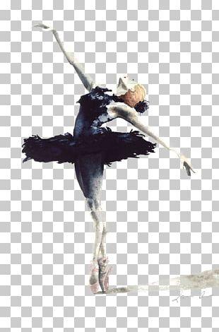 Ballet Dancer Swan Lake Cygnini Drawing PNG