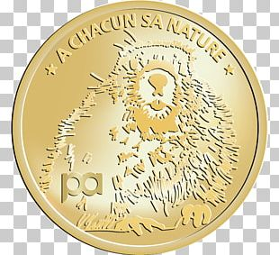 Coin Gold Medal Cash Money PNG