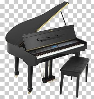Grand Piano Musical Instruments PNG