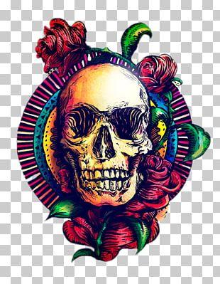 Skull Art Calavera Human Skeleton PNG