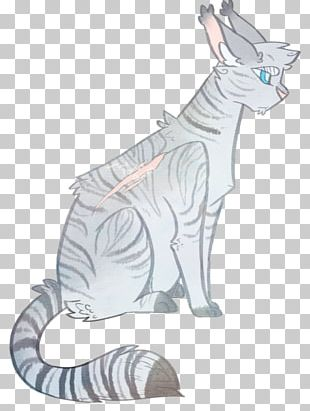 Cat Whiskers Drawing Warriors PNG