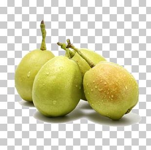 Pear Fruit Avocado Food Apple PNG