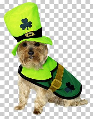 Saint Patrick's Day Dog Clothing Costume Dress PNG