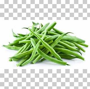 Green Bean Vegetable Common Bean Nutrient Nutrition PNG