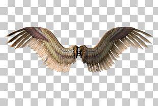 Angel Wing Devil PNG