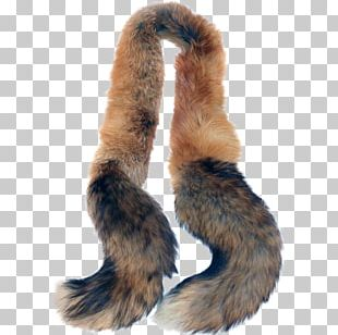 Fur Clothing Red Fox Silver Fox Feather Boa PNG