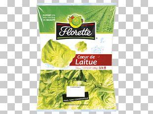 Romaine Lettuce Vegetarian Cuisine Food Basil Pimiento PNG