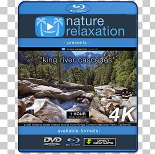 Blu-ray Disc 4K Resolution Ultra-high-definition Television Display Resolution 1080p PNG