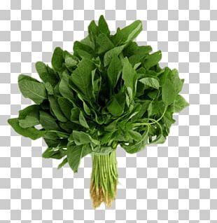 Organic Food Callaloo Vegetable Heirloom Plant Greens PNG