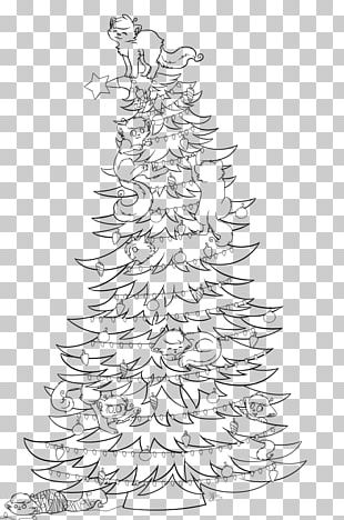 Spruce Christmas Tree Fir Art Drawing PNG