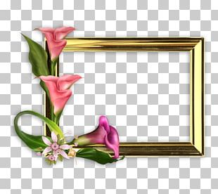 Mother's Day Photography Frames PNG