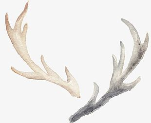 Hand-painted Watercolor Antlers PNG