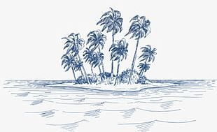 Sea Coconut Trees PNG