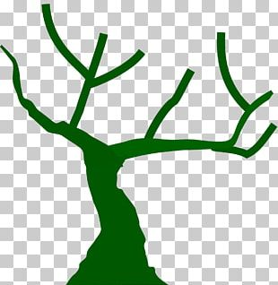 Branch Tree Computer Icons Trunk PNG