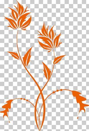 Floral Design Branch Leaf Petal Pattern PNG
