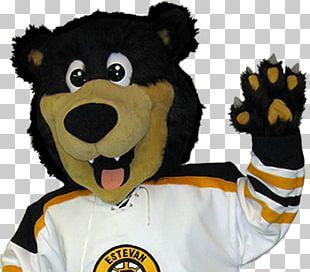 Mascot Boston Bruins National Hockey League Estevan Bruins Ice Hockey PNG
