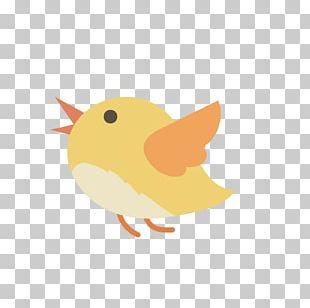 Bird Cartoon Illustration PNG