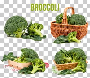 Broccoli Cabbage Vegetable Food PNG