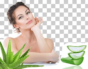 Skin Care Skin Infection Aloe Vera Acne PNG
