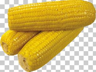 Corn On The Cob Sweet Corn Corn Kernel Candy Corn PNG