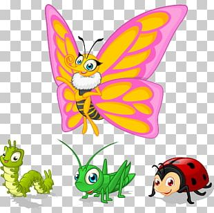 Butterfly Cartoon Character Illustration PNG