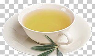 Hōjicha Earl Grey Tea Mate Cocido Oolong PNG