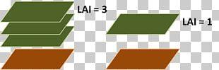 Leaf Area Index Definition Logo Explanation PNG