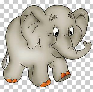 Elephant Animation PNG