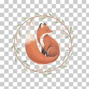 Fox On Main Drawing Illustration PNG