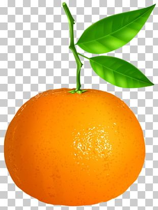Tangerine Mandarin Orange Vegetarian Cuisine PNG
