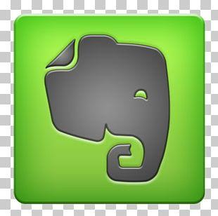 Logo Organization Elephantidae Management PNG