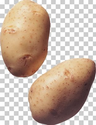 Kennebec Potato French Fries PNG