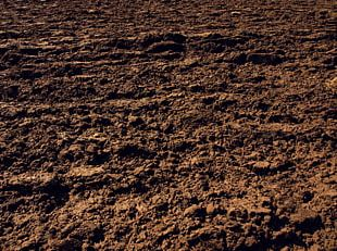 Soil Photography Texture Clay PNG