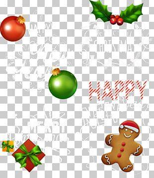 Christmas Tree Christmas Lights PNG