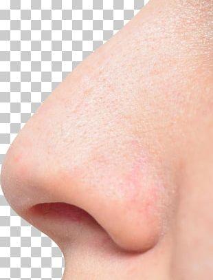 Nose PNG