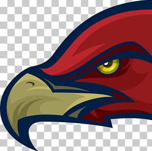 Mill Creek High School Hoschton Hawk Logo PNG
