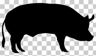 Domestic Pig Cattle Sheep Silhouette PNG