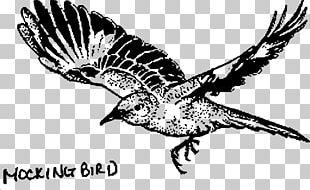 To Kill A Mockingbird Drawing Line Art PNG
