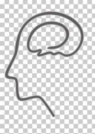 Cerebrum Illustration PNG
