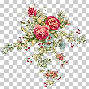 Floral Design Flower Bouquet Portable Network Graphics PNG