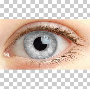Light Human Eye Iris Retina PNG