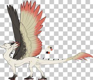 Velociraptor Bird Beak Feather PNG