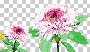 Chrysanthemum Floral Design SWF PNG