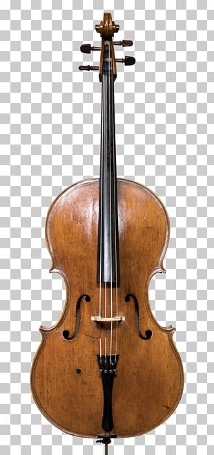 Cello String Instruments Musical Instruments Violin Double Bass PNG