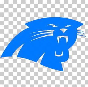 Carolina Panthers Seattle Seahawks NFL Denver Broncos American Football PNG