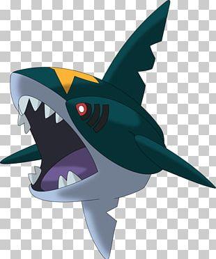 Pokémon Omega Ruby And Alpha Sapphire Pokémon GO Pokémon Ruby And Sapphire Pokémon Battle Revolution Sharpedo PNG