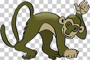 Chimpanzee Common Squirrel Monkey Primate PNG