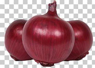 Vegetable Red Onion Food Potato Onion Palak Paneer PNG