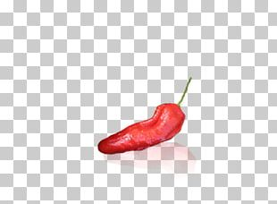 Tabasco Pepper Serrano Pepper Bird's Eye Chili Cayenne Pepper Malagueta Pepper PNG